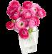 Gėlių salonas