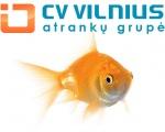 CVVilnius atrankų grupė